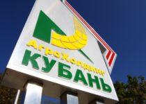 Управленческий учет в ОАО «Агрохолдинг кубань»