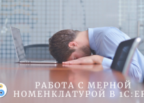 """Работа с мерной номенклатурой в """"1С:ERP"""""""